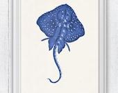 Blue stingray 2 - wall art sea life print- Home decor print , Bathroom wall art stingray SAS089