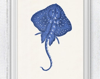Blue stingray 2 - wall art sea life print- Home decor print , Bathroom wall art stingray SPA089