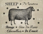 Sheep French breed Farm art Instant graphic digital download image transfer for iron on burlap decoupage pillow paper tote bag No. gt148