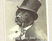 Birthday card for the unusual edgy and quirky person dog lover style from River Spring, labrador, pit bull, or just beloved pet, funny