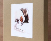 Wookiee The Chew - Set 0f 8 Greeting Cards with Envelopes & Presentation Box - by James Hance!