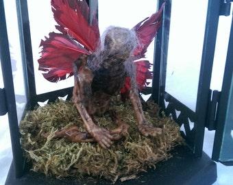 Red Winged Mummified Fairy in Black Lantern