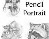 Custom Pencil Portrait Commission - Any pet drawn!