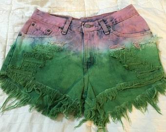 Vintage HIPSTER Levi's Denim Destroyed Cut-Off Shorts Levis XS