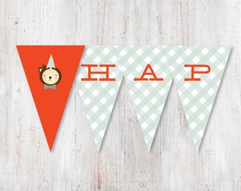 Instant Download - Happy Birthday Teddy Bear Picnic Bunting Banner - Digital Printable pdf - Party Decorations - Blue Red Gingham