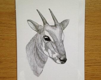 Endangered Saloa A6 Greeting Card