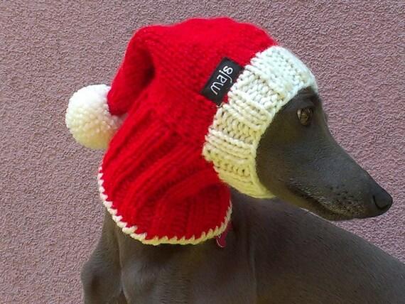 Santa dog hat christmas mas