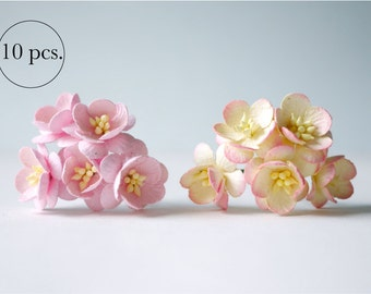 Paper flower,10 pieces mulberry cherry blossoms; 5 pcs. pink and 5 pcs. pink brush cream color.
