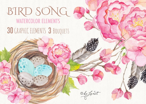 https://www.etsy.com/uk/listing/241866158/bird-song-collection-floral-watercolor?ref=shop_home_active_20