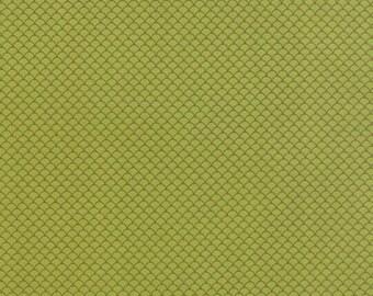 Half Yard - 1/2 Yard - Scallops Grass - NECO by MOMO for Moda