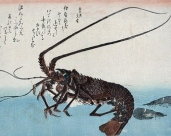 Shrimp and Lobster Japanese Wood-Cut Print (Art Prints available in multiple sizes)