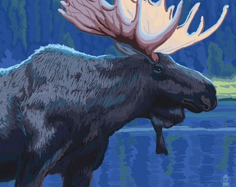Estes Park, Colorado - Moose at Night (Art Prints available in multiple sizes)