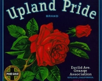 Upland Pride Brand Citrus Crate Label - Upland, CA (Art Prints available in multiple sizes)