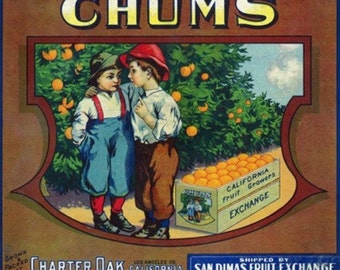 Charter Oak, California - Chums Brand Citrus Label (Art Prints available in multiple sizes)