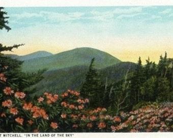 Blue Ridge Mountains, North Carolina - Mount Mitchelll Scene (Art Prints available in multiple sizes)
