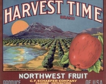 Harvest Time Apple Label (Art Prints available in multiple sizes)