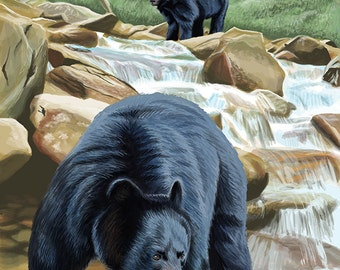 Kings Canyon National Park - Black Bears Fishing (Art Prints available in multiple sizes)