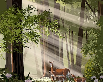 Shenandoah National Park, Virginia - Deer and Fawns (Art Prints available in multiple sizes)