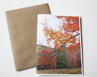 Blank Note Card - Fall Dreams - 1 card