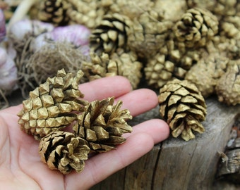 Gold pinecones wedding decor Christmas decor Holiday Decor Christmas Ornament Gold  Pine cones Natural Pine cones ,Painted Pine Cones Fall