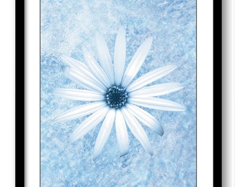 White Daisy Flower Blue Bathroom Art Print Modern Elegant Watercolor Bathroom Wall Decor Flower Painting Bedroom Living Room