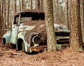 1956 Rusty Ford F100 Truck in trees Photograph