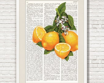 Dictionary Art Print LEMONS, Wall Art, kitchen decor, fruit, cottage style, farmhouse decor, shabby chic decor, Original prints, #101-2