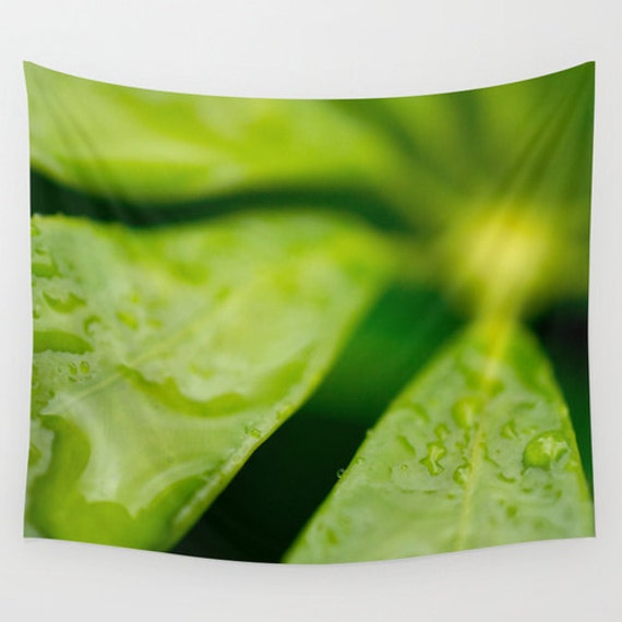 Wall Tapestries, Green Home Decor, Tropical Plant Image, Large Wall Decor, Fine Art Photo, Rain Drop Picture, Cloth Art, Indoor or Outdoor