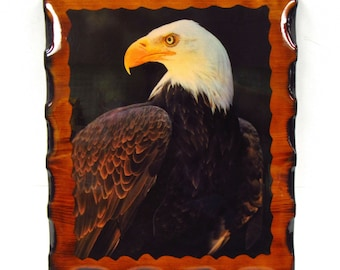 1970's Bald Eagle Decoupage Wall Hanging