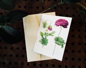 Vintage botanical/floral greeting card - POPPY