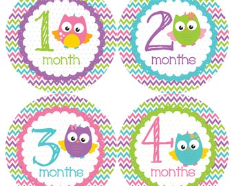 Pretty Owls Monthly Onesie Stickers - Pink Purple Blue Green GIrl