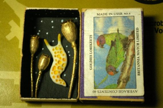 Poppy Seed Pods And Polymer Clay Slug Matchbox By