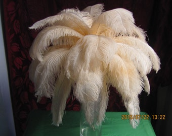 100pcs Elegant Champagne Pink Ostrich Feather Plume for Wedding centerpieces,Samba accessories