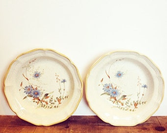 Pair of large vintage cereal bowls by Mikasa. Delicate blue daisy pattern from the 1970's.