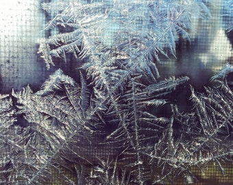 Nature Photography - Winter Photography - Window - Ice - Frost