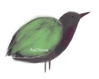 Oiseau vert, mauve, gris, dessin numérique original, impression de qualité, type giclée. Cadre non-inclus.