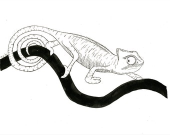 chameleon ink illustration 1