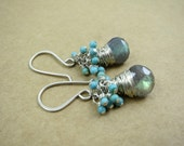 Labradorite And Turquoise Earrings