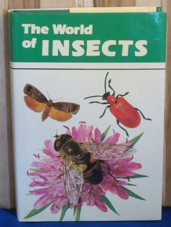 The World of Insects - Adriano Zanetti - 1979 - Vintage Kids Book