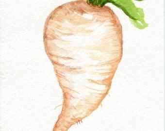 White Daikon Radish Painting watercolor,Original, Vegetable Series 5 x 7, SharonFosterArt Farmhouse decor