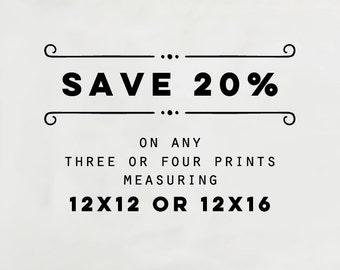 12x16 or 12x12 Prints For Ribba Frames, Choose Any Three or Four Photographs, Fit IKEA Ribba Frames