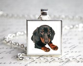 Doxie Dachshund Pendant Necklace with Paw Print Organza Bag