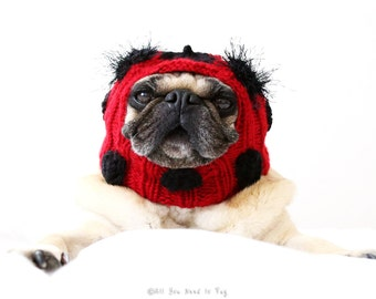 Dog Hat - Lovely Little Ladybug Hat
