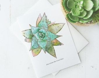 Blank Botanical Greeting Card-  Aloe Striata Plant - Original Artwork