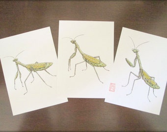 ACEO Sneaky Mantis set of 3 Archival Prints of Original Ink Painting