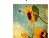 Special listing for Linda - one gallery wrap of Happy Landing a sunflower and bee, shipping included