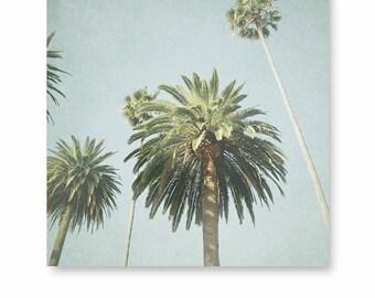 LA Travel Photo, Los Angeles, Palm trees, Beach Decor, California Photography, California print, Palm Tree Photo, Art Print, LA
