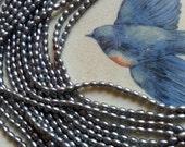 DESTASH! Grey/Blue Rice Pearls, 3 x 5 mm - Full Strand
