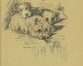 Antique Terrier Dog Print, 1930s Lucy Dawson, Pet Print, Wall Art Illustration to Frame, Color plate, brown, dogs, B-1