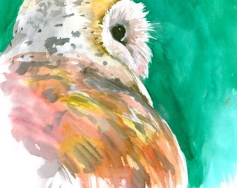 Barn Owl, Original watercolor painting, 15 x 11 in, white bird painting, owl lover turquoise orange wall art